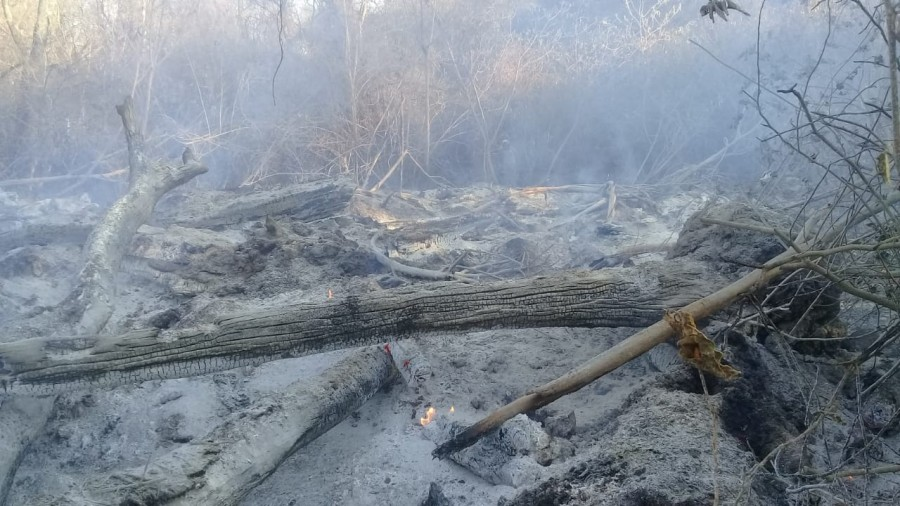 Incendios azotan a comunidades del Municipio de Machareti