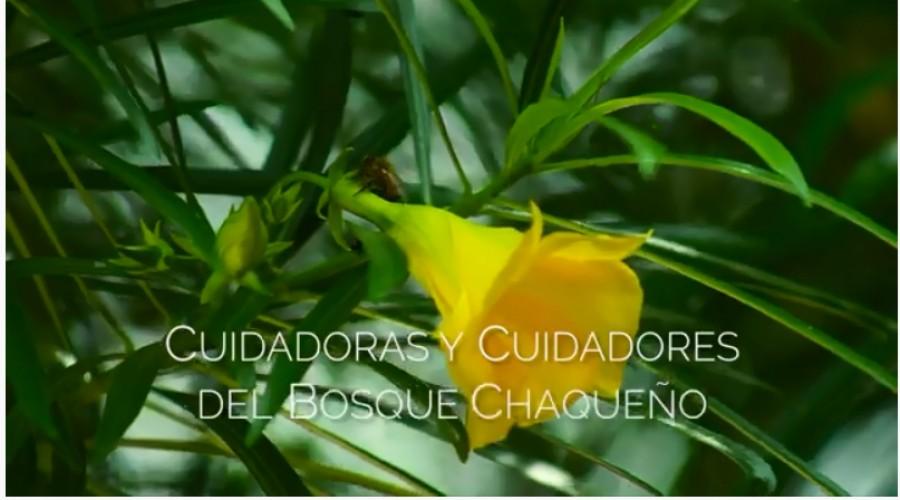 Estreno del Documental: Cuidadoras y cuidadores del Bosque Chaqueño