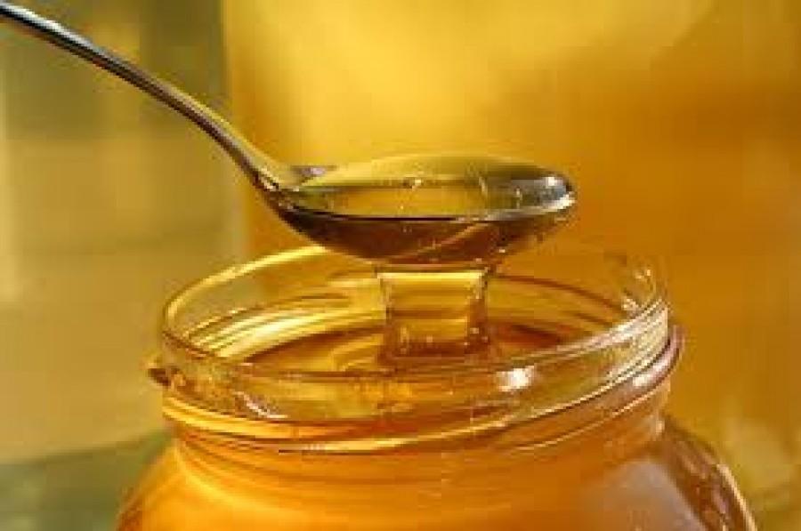 Resumen Segunda semana del Foro  Mercados apícolas y estrategias de comercialización para impulsar la apicultura como actividad económica estratégica