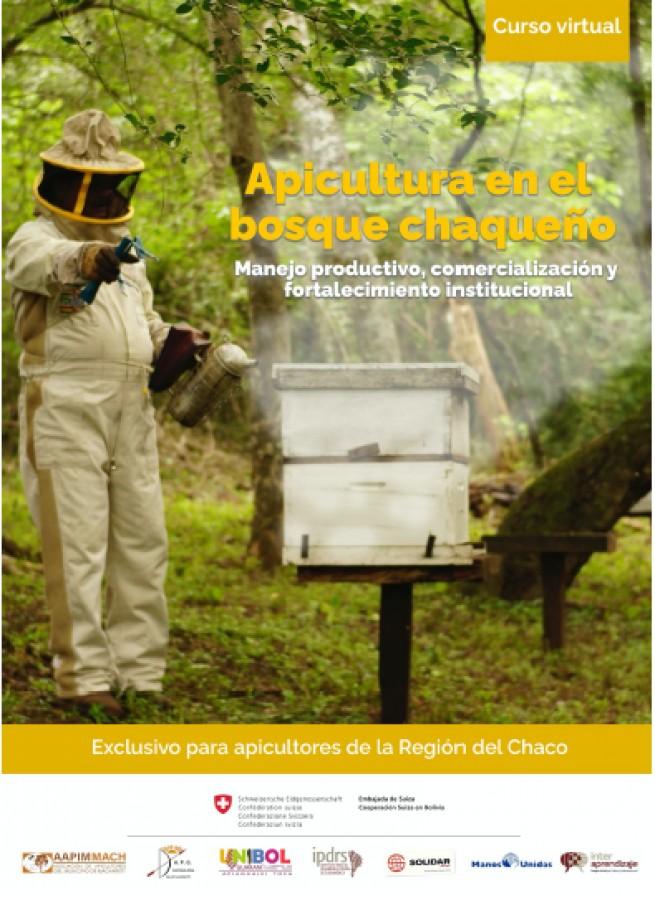 Curso virtual sobre Apicultura en el bosque chaqueño en la semana del Día Mundial de las Abejas